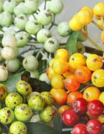 Искусственные ягоды